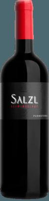 Cuvee Pannoterra 2017 - Salzl